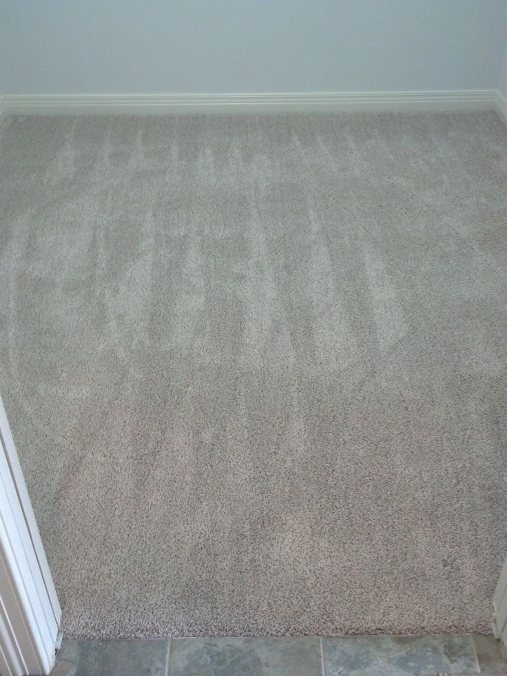 11 Best Texture Plush Carpet Images On Pinterest Plush Carpet Bedrooms And Bedroom