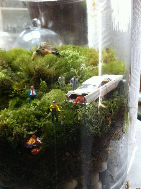 Terrariums for the 21st Century. These are really cool! Twig Terrariums! by twigterrariums, via Flickr