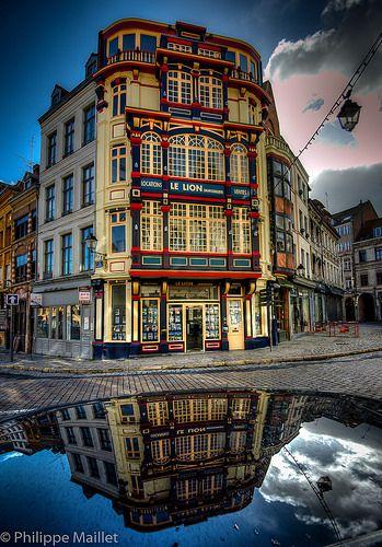 Le Lion . Lille ~France ##Lille