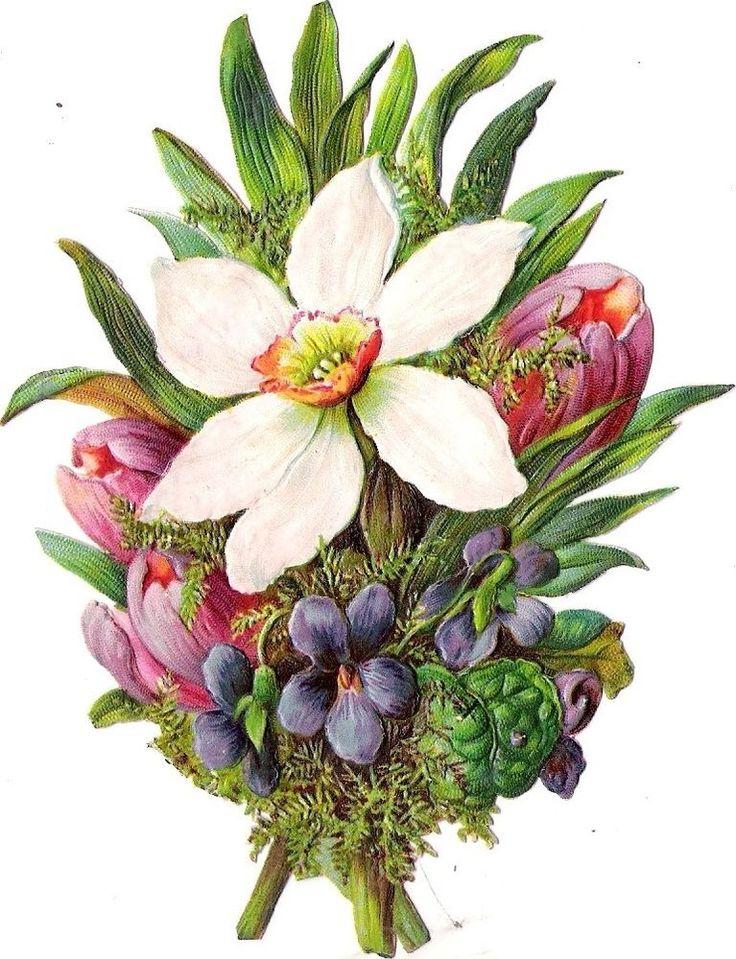 Oblaten Glanzbild scrap die cut chromo  Frühlings blumen strauß 12,5 cm  Tulpe