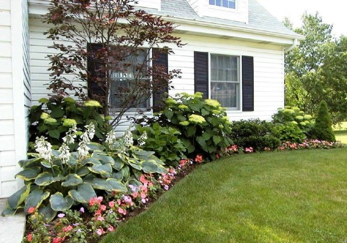 Outdoor Foundation Landscaping Ideas