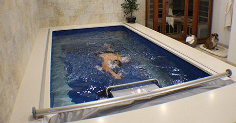 Piscine Nuoto Controcorrente | Piscine Coperte e Piscine Scoperte | Endless Pools