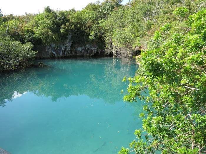 Walsingham Nature Reserve in Bermuda