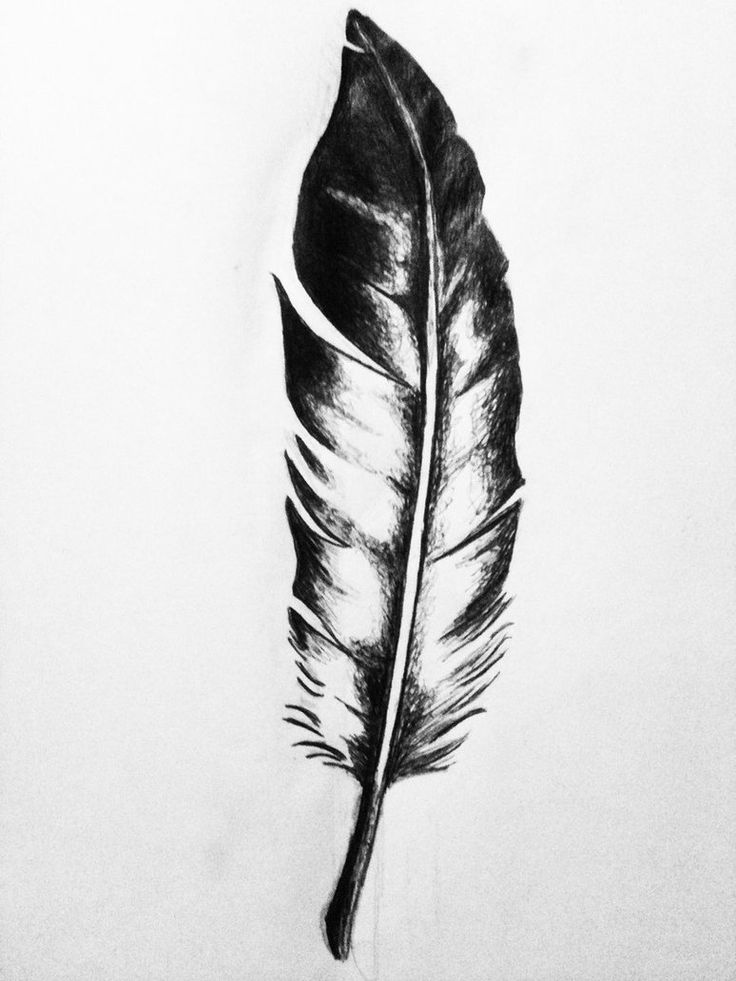 maybe three feathers attached to a braid of leather???
