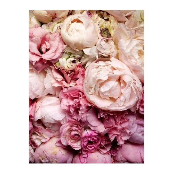19 best June Flowers images on Pinterest   Flower arrangements ...