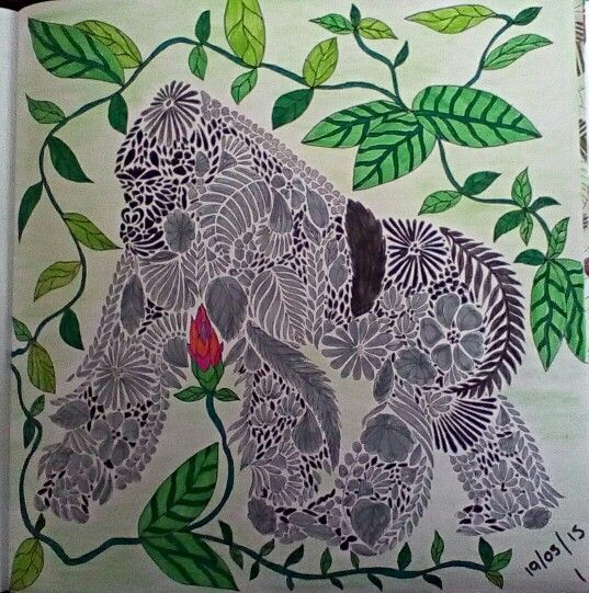 Colouring In Book Animal Kingdom The 589 Best Images About On