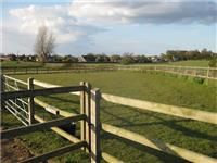 Kids can play in the enclosed paddocks