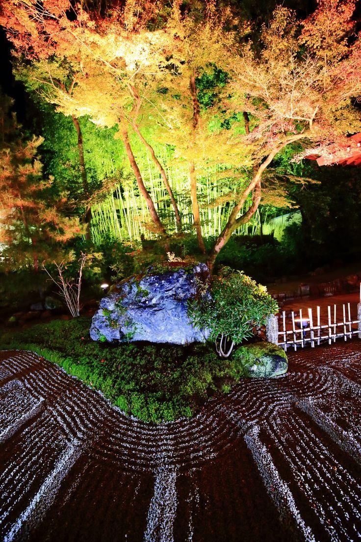 京都の紅葉名所の宝厳院(ほうごんいん)の本堂前の石庭と竹林と紅葉ライトアップ