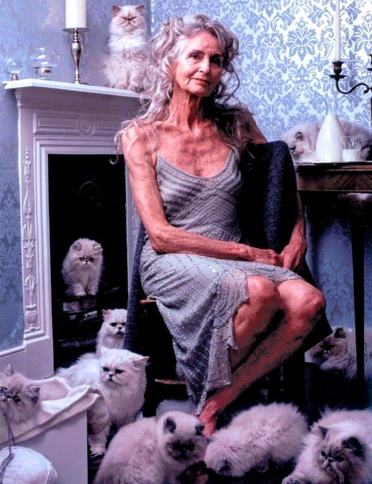Ageing Gracefully Beautiful Old Woman Daphne Selfe