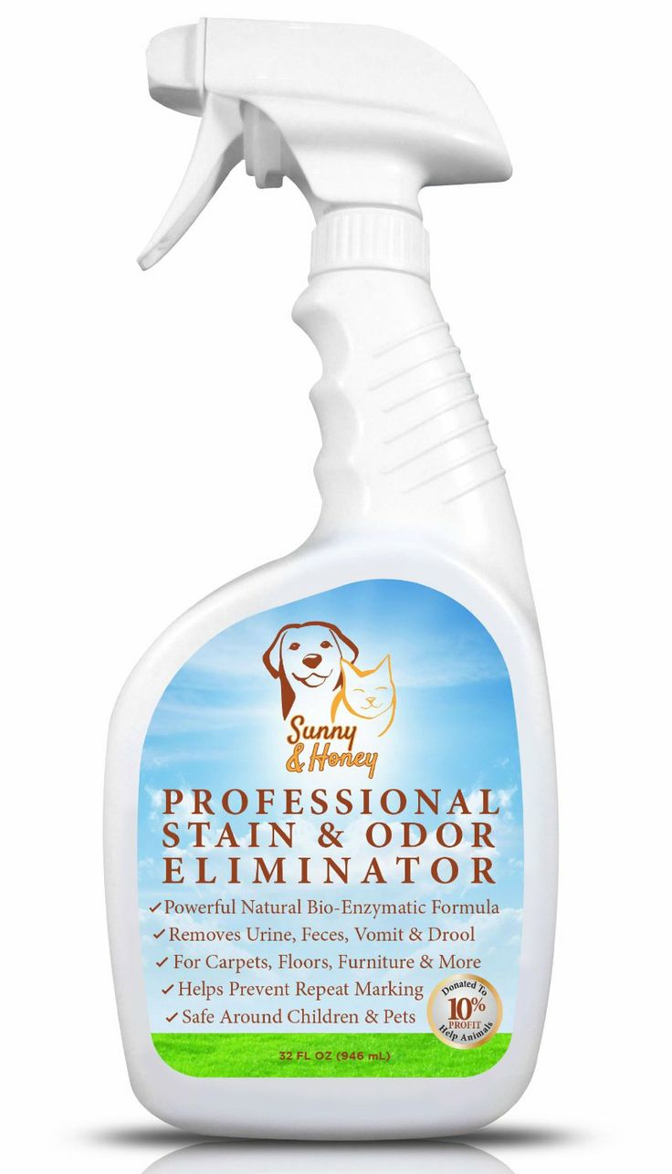 Best Enzyme Cat Urine Remover