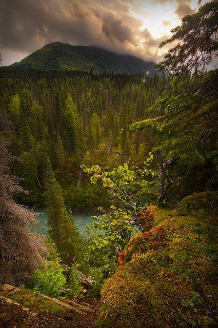 Along Hwy 1, Homer, Alaska