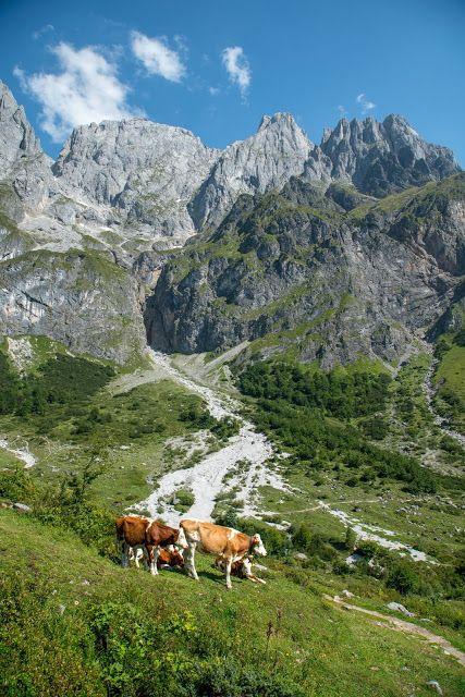 Vier-Hütten-Wanderung Mühlbach