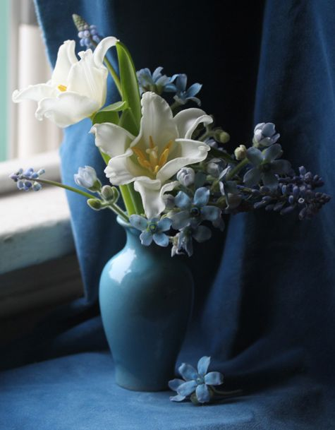 blues: Spring Flower, Beautiful Blue, Blue Vase, Flower Arrangements, Floral Arrangements, Something Blue, Palettecool Blue, Deep Blue, White Tulip