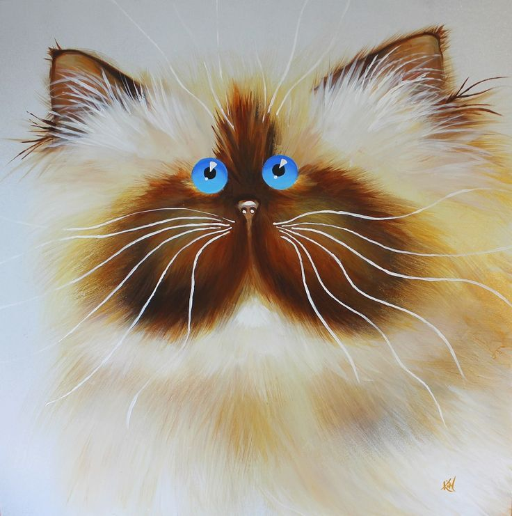 CAT with blue eyes by Kim Haskins #catillustration #cat