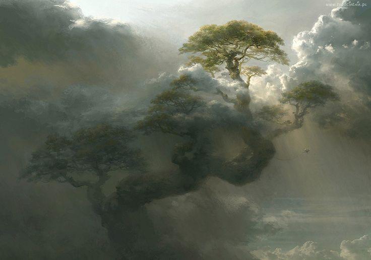 Chmury, Drzewo, Mgła