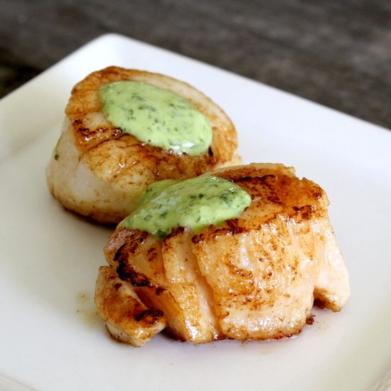 Pan-Seared Scallops with Cilantro Lime Sauce