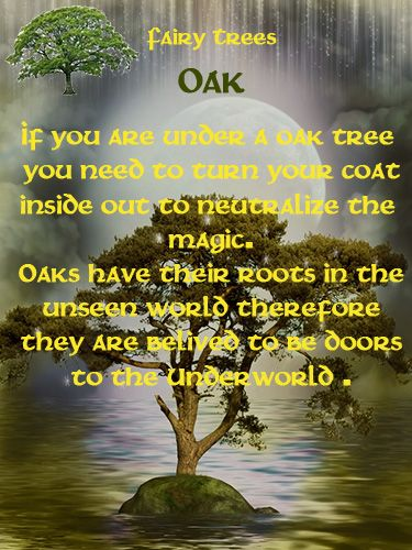 Celtic Tree Month of Duir 2 The Oak is connected with spells for protection and…