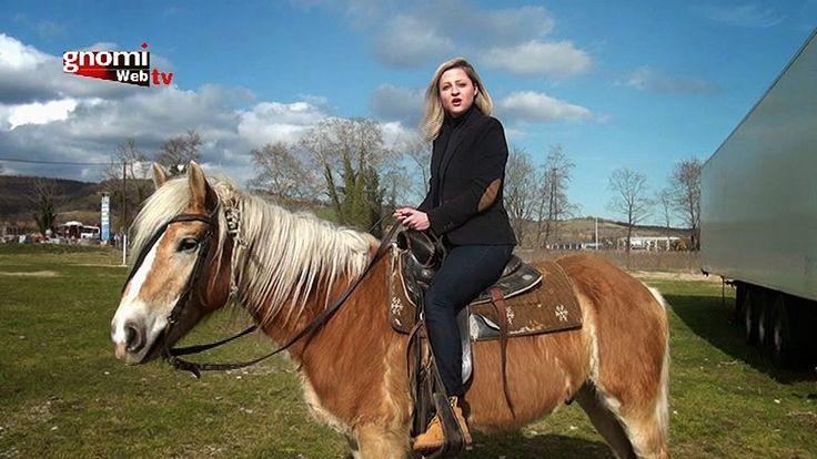 """ΓΝΩΜΗ ΚΙΛΚΙΣ ΠΑΙΟΝΙΑΣ: Η φάρμα του Ηρακλή και οι """"Ατρόμητοι Ιππείς"""" στην ..."""