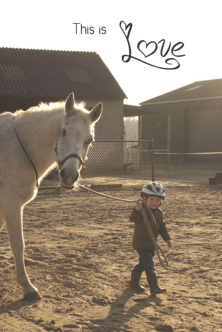 Geniet van de liefde tussen een peuter en een paard in deze video https://youtu.be/g6WjMC0YHC8?list=PL3BNsdOXilR0W6hdki4buz0ffRzkidgJU