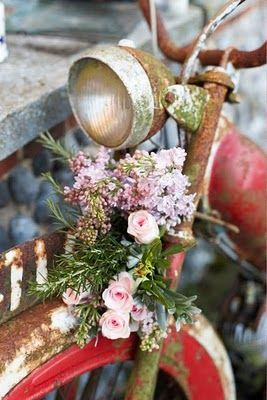 inspiring vintage and garden combined