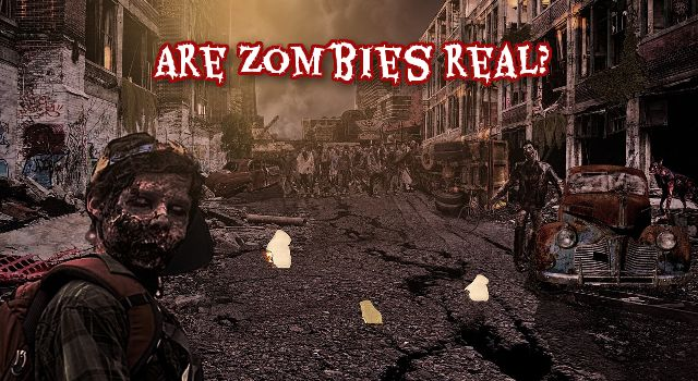 Are Zombie Real?