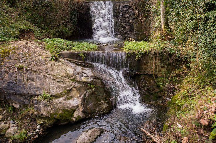 Villa Mulino di Bacchereto | Carmignano Prato Tuscany