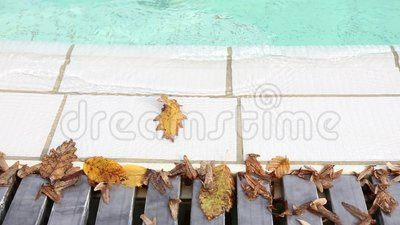 Autumn at the pool - dry leaves fallen in the pool.