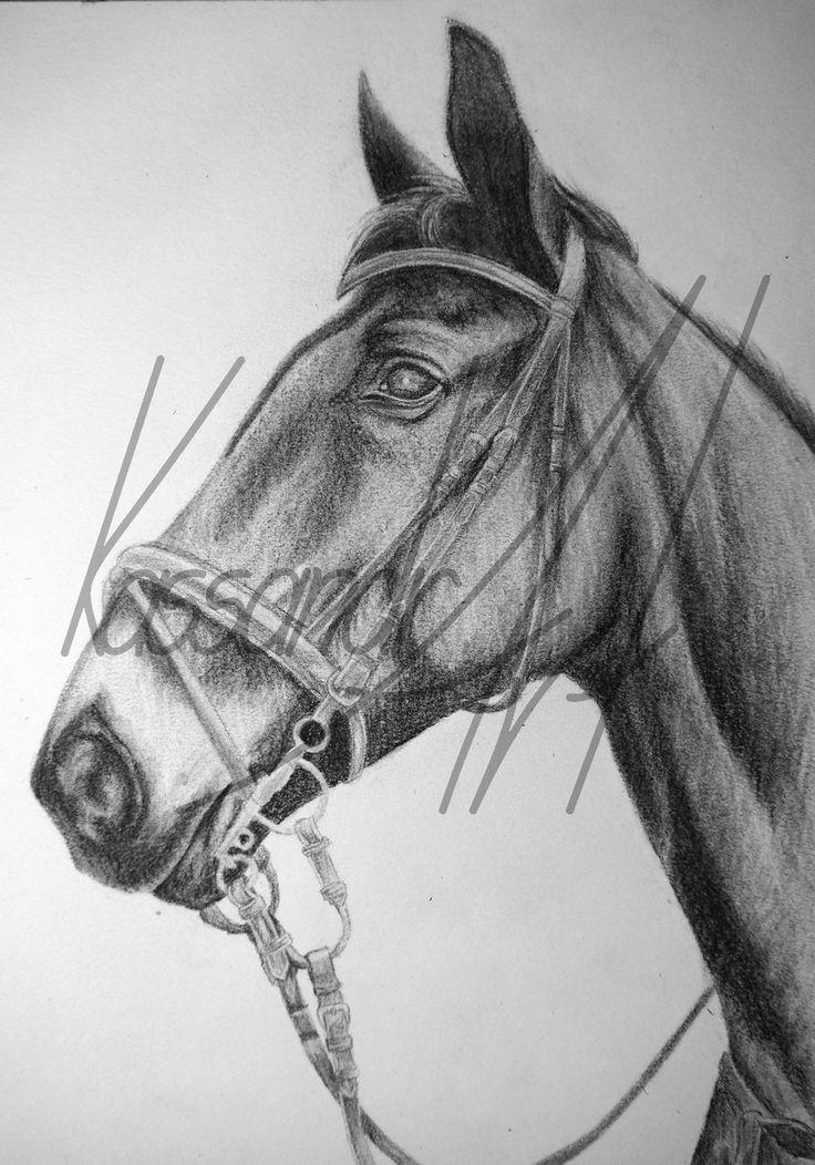 Fotorealistisches Kohleportrait Din A4 #kassandrART #Pferd