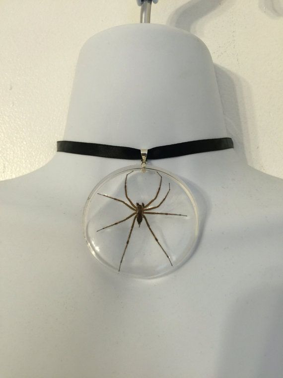 Real spider encased in clear resin suspended by AliceInDesiLand