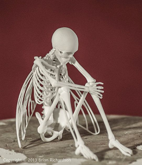 Fairy Skeleton 3D Print by MythicArticulations on Etsy, $60.00