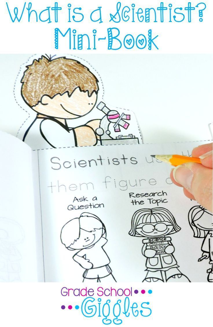 What Do Scientists Do Interactive Notebook What Is A Scientist First Grade Science What Do Scientists Do [ 1128 x 736 Pixel ]