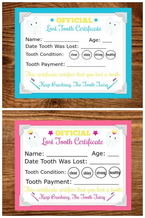 Printable Tooth Fairy Letter Tooth Fairy Letter Tooth Fairy Certificate Tooth Fairy Receipt Free Printable
