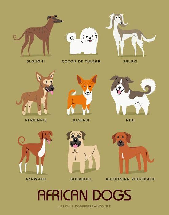 64 besten hunde silhouette bilder auf pinterest  hunde