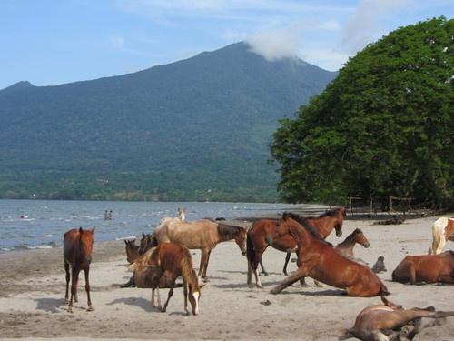 things to do in san juan del sur nicaragua | Top Things To Do in Nicaragua