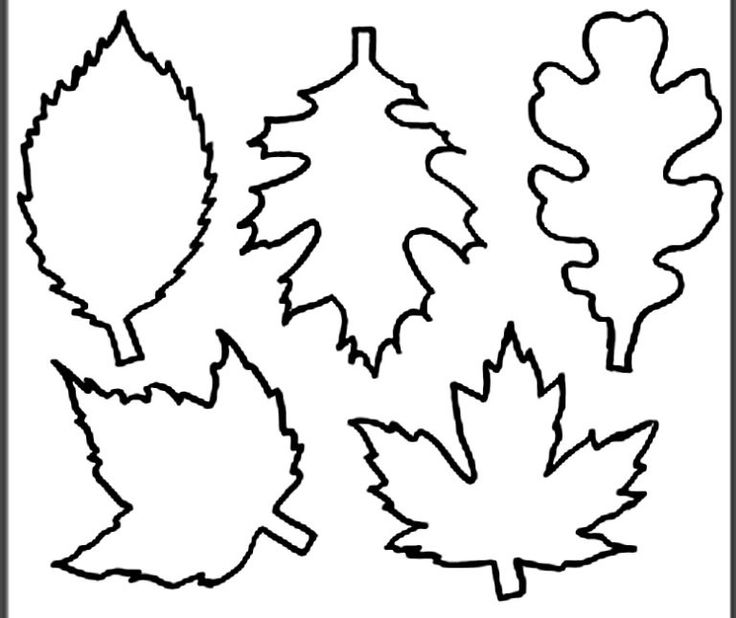 Листья для открытки картинки шаблоны, открытки