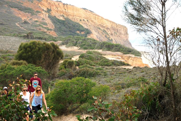 Walking alongside the beach en-route to Point Addis. The views are amazing along this section of the Point Addis walk | Great Ocean Road.