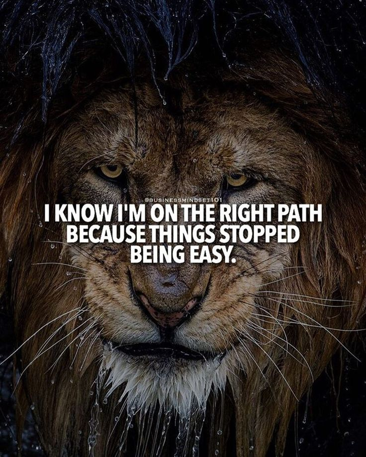 I know I'm on the right path because things stopped being easy.