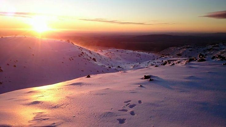 Sunrise Whakapapa