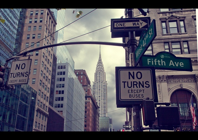 NYC. The urban jungle  by Dani Morell // Flickr: