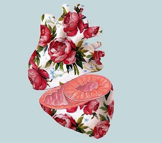 #heart #romantic