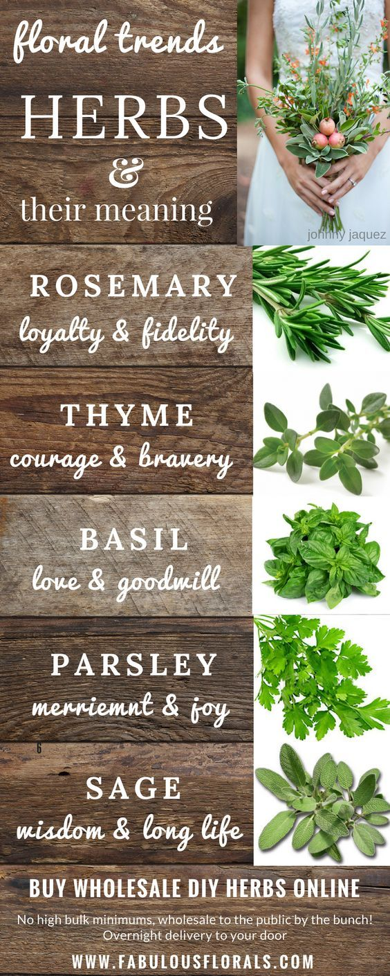 DIY Herb Bouquet Trends ! Herbs & their meanings. www.fabulousflorals.com The #1 source for wholesale DIY wedding flowers! #weddingflowers #diyflowers #diywedding #herbs #diybride #herbbouquet