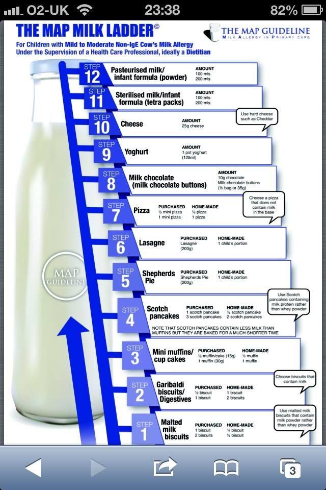 Milk Cheese Chocolate Allergy