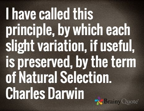 I have called this principle, by which each slight variation, if useful, is preserved, by the term of Natural Selection. Charles Darwin