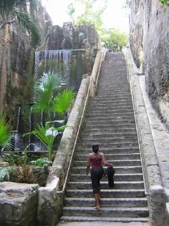 Queen's Staircase, Nassau, Bahamas....I thought I was never going to get to top of this staircase!!!