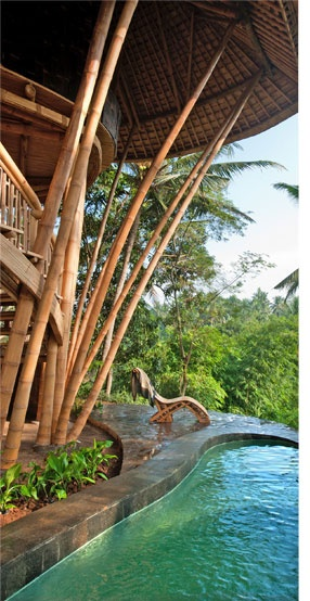 Green Village in Bali, a planned community built out of bamboo. Bamboo is a sustainable building material!