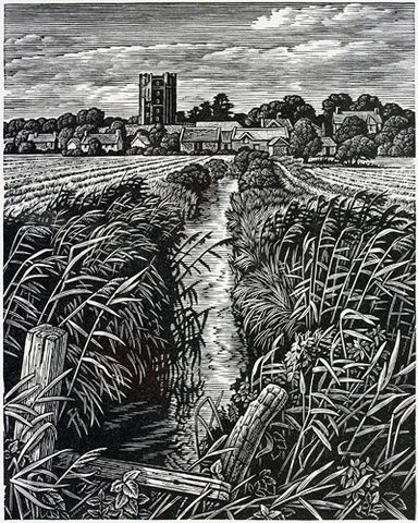 Orford Meadows by Howard Phipps