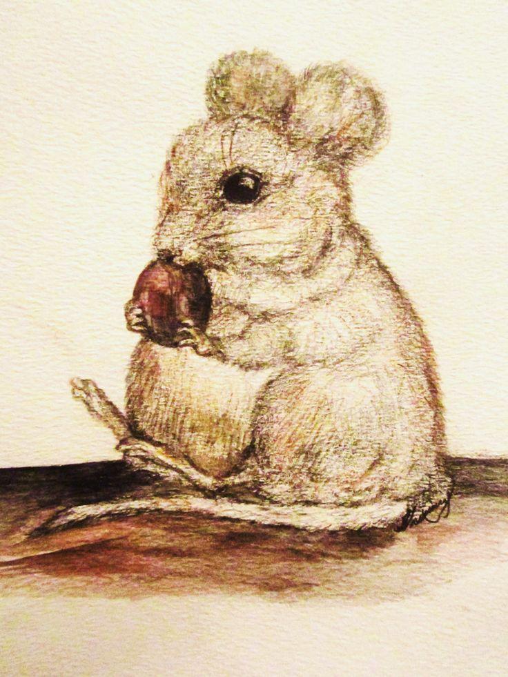 Berlioz the nutcracker by Shanni Smith
