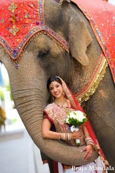 AWE OMG pic with an elephant!! http://maharaniweddings.com/gallery/photo/7366