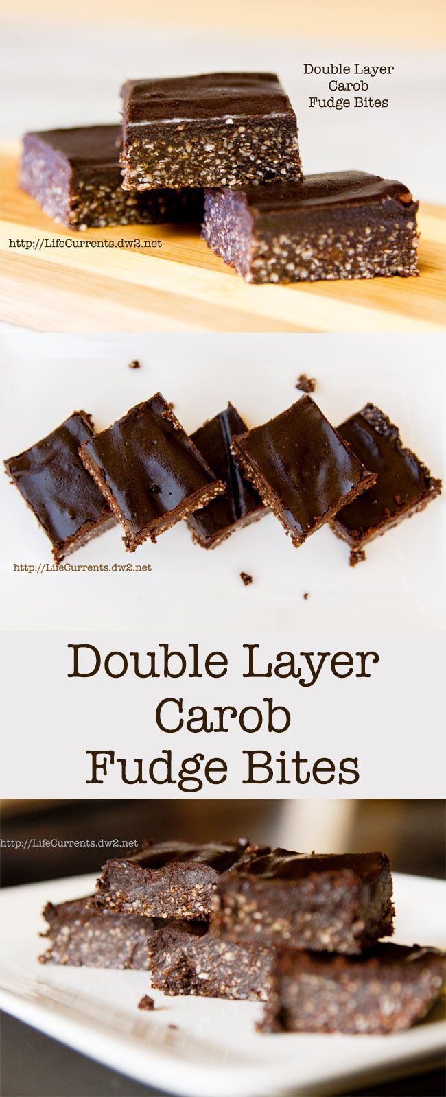 Double Layer Carob Fudge Bites --- These are a great healthy dessert snack item. Vegan, gluten-free, grain-free, paleo, no processed sugar, healthy fats from whole foods like nuts and coconut. Super tasty.