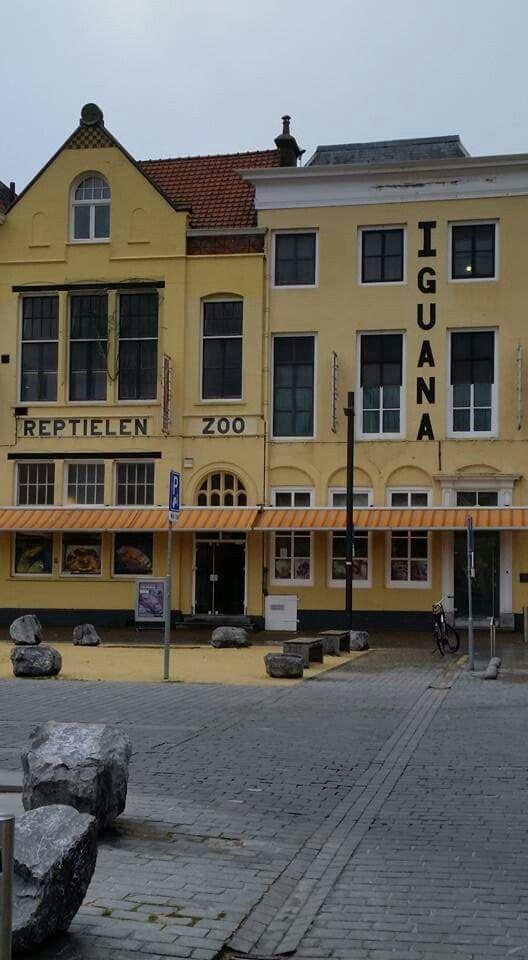 Reptielen Zoo Iguana, Vlissingen